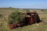 409084d1353113110-old-abandoned-cars-big-thread-robertson2