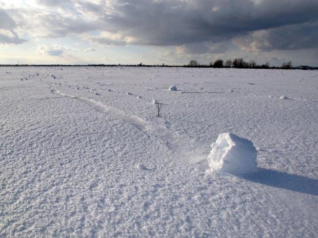 snow-roller-1[2]