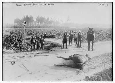 belgians-burying-horses-after-battle