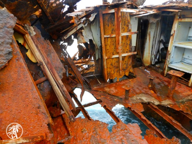 Bimini-Shipwreck-7-650x