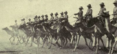 british-camel-corps-in-the-sudan