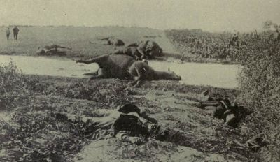 dead-belgian-cavalrymen-and-their-horses