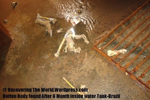found-in-water-reservoir-2 (4)