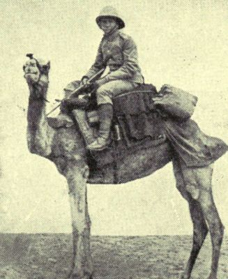 members-of-the-british-camel-corps
