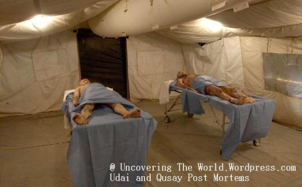 WORLD NEWS USIRAQ-SONS 7 KRT