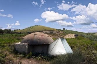 Camping-Amanita_aHR_Gal700px