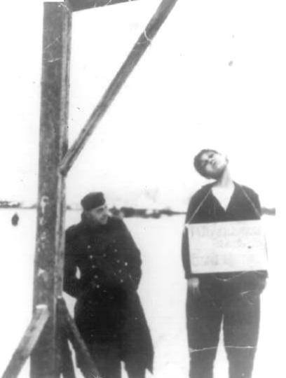 Zoya-5-left-hanging