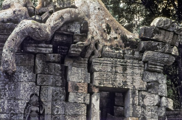 1965-Crushed-by-the-weight-of-time-at-Angkor-Wat-Kamboscha