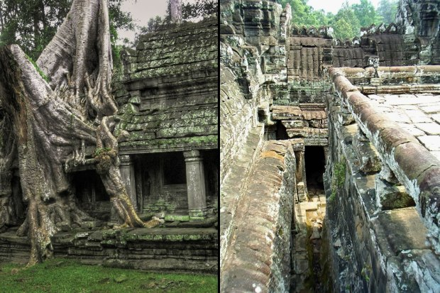 Angkor-Wat-Tree-on-left-and-cramped-corridors-of-ancient-Bayon