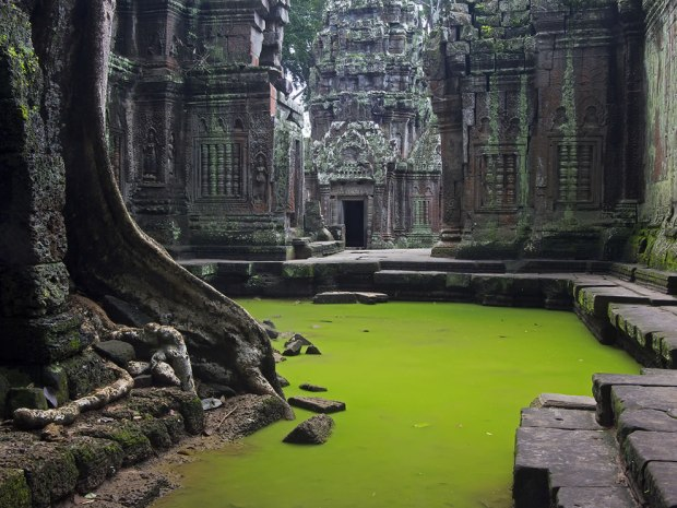 Echoes-of-Silence-the-beauty-and-mystical-ambience-of-Ta-Prohm.-Angkor-Cambodia