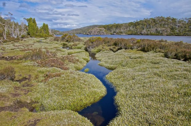 Lake-Ball-Walls-Of-Jerusalem-in-Tasmanian-Wilderness