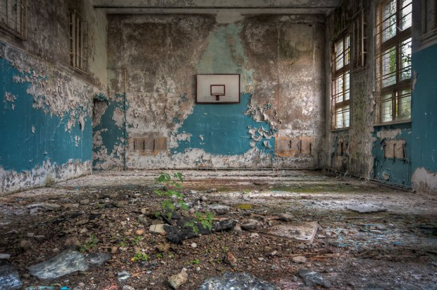 Schools-out-nature-reclaiming-an-old-school-gym-beautiful-decay-