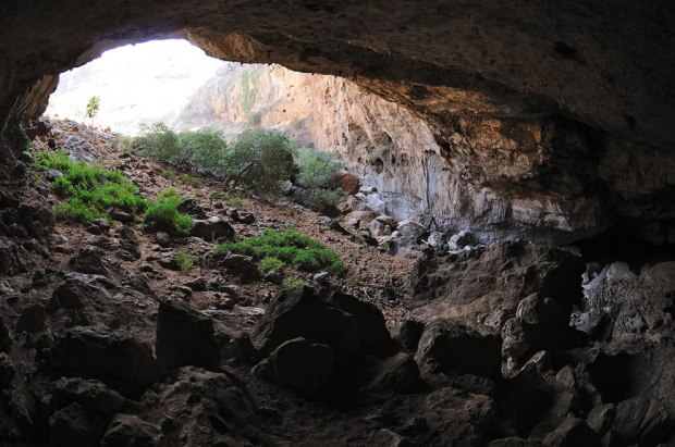Wadi-Geneb-cave-at-Socotra